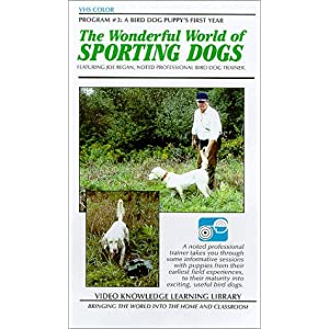 The Wonderful World of Sporting Dogs (A Bird Dog Puppy's First Year) movie