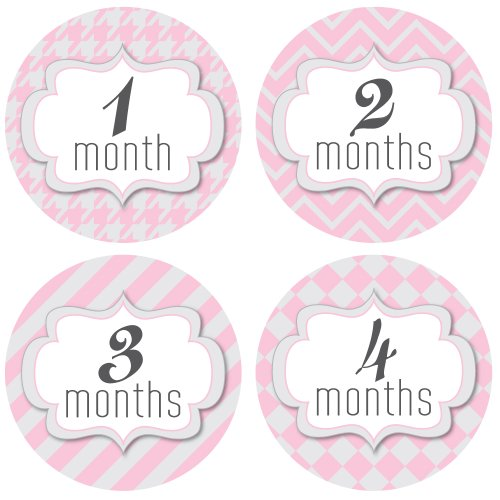 Monthly Onesie Stickers - Pretty in Pink Patterns Theme - Baby Girl Bodysuit Stickers - 1