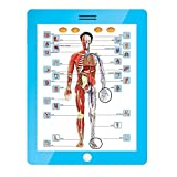 Mitashi SkyKidz Anatomy Learning Pad