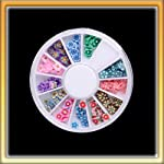 HOT 12color Attractive Flower Design Nail Art Decoration Wheel NEW