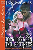 img - for Torn Between Two Brothers [Billionaires: Too Hot to Handle 2] (Siren Publishing Menage Everlasting) book / textbook / text book
