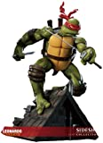 Teenage Mutant Ninja Turtles - Comiquette: Leonardo