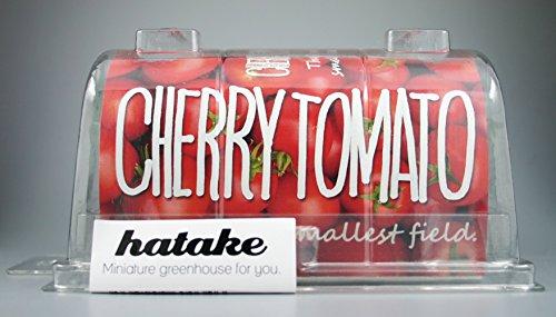 hatake(Ver.3) プチトマト