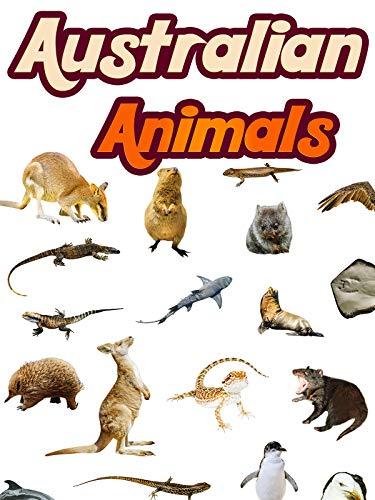 Australian Animals on Amazon Prime Video UK