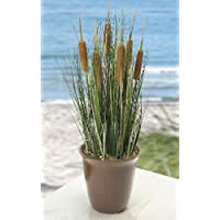 Artificial Reed Plant with Pot - Cattails and Reed Grass in Red Pot Product SKU: HD222542