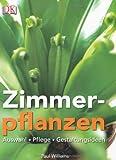 Exotische zimmerpflanzen aus obst selber ziehen - Zimmerpflanzen gestaltungsideen ...