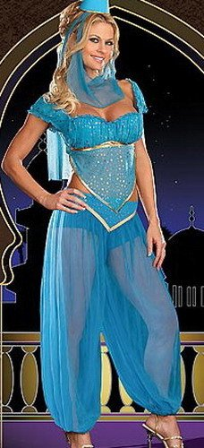 Princess Jasmine Genie Belly Dancer Fancy Dress