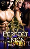 The Perfect Union (Perfect Love)