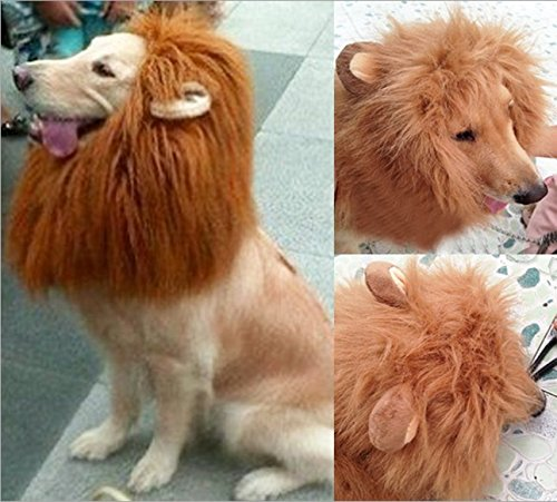 [Vvhome Pet Costume Dog Hairpiece Lion Wig with Ears (red brown)] (Dog Lion Costume Large)