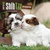 Shih Tzu Puppies 2015 Calendar