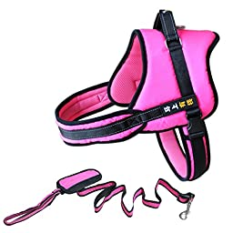 Soft Padded Dog Harness Adjustable No Pull Large Dog Power Harness for Large Dogs, 2 PIECES, Rose, L
