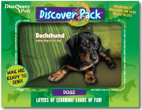 Dog Discover Pack, Dachshund