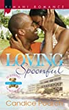 img - for Loving Spoonful (Kimani Romance) book / textbook / text book