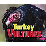Turkey Vultures (Birds of Prey)