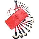 FASH Professional goat hair and nylon makeup Brush Set with Faux Leather Pouch, 22-Piece For Eye Shadow, Blush, Eyeliner.....