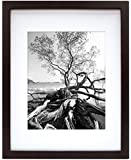 MCS Art 9 by 12-Inch Shadow Box Frame with 6 by 8-Inch Mat Opening, Walnut