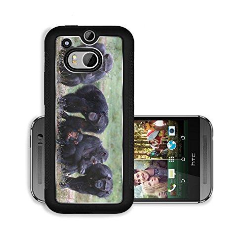 Luxlady Premium HTC One M8 Aluminium Snap Case When Monkey s Go Bad IMAGE ID 221188