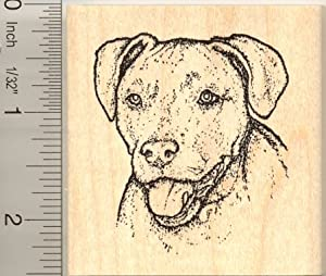 Fritz the Red Nosed Pitbull Dog Rubber Stamp