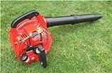 Petrol Garden Leaf Blower TPB260