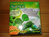 Turtle-Bowl-with-Swimming-Turtle