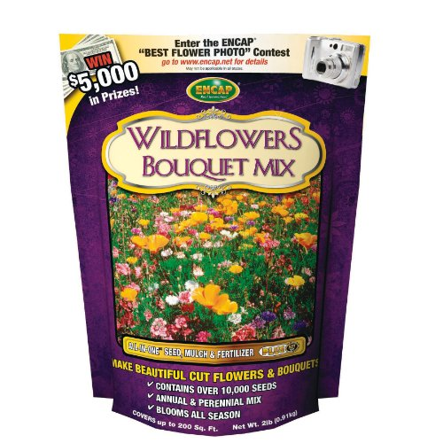 Encap 10809-6 Wildflowers Bouquet Mix, 2 Pounds