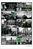 Posters: Dublin Poster - Sights Collage, Ale, Temple Bar Pub, Half Penny Bridge, Green Phone Box, St. Patrick's Cathedral (36 x 24 inches)
