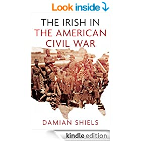 Stories of the Irish in the American Civil War (Irish in the World)