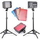 Neewer® 2 Pieces CN-160 Dimmable Ultra High Power Panel LED Video Light Photographic Lighting Kit for Canon, Nikon, Sony and other DSLR Cameras