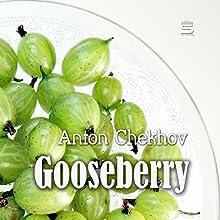 Gooseberries | Livre audio Auteur(s) : Anton Chekhov Narrateur(s) : Max Bollinger
