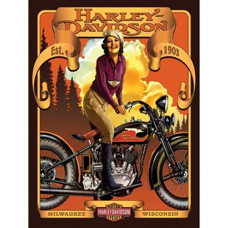 Harley Davidson Classic Beauty Jigsaw Puzzle 500pc