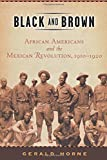 Black and Brown: African Americans and the Mexican Revolution, 1910-1920 (American History and Culture)