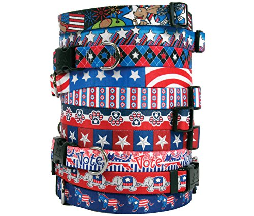 [Patriotic USA Dog Collar - with Tag-A-Long ID Tag System - American Daisy - Medium 14 to 20 inch length x 1 inch] (The Tick Tv Show Costume)