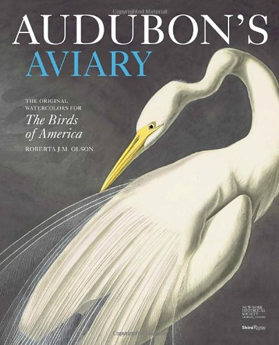 Audubon's Aviary: The Original Watercolors for The Birds of America (Audubon Birds Of America 2012 compare prices)