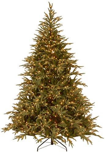"National Tree ""Feel-Real"" Frasier Grande Hinged Tree With 1000 Dual Led Lights, 7-1/2-Feet"