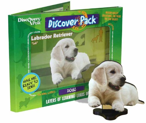 Discovery Post Dog Discover Pack, Labrador