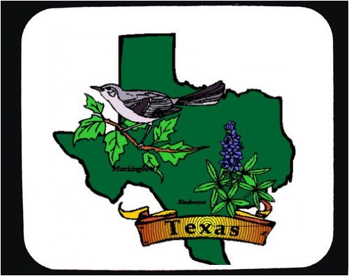 Mouse Pad with bluebonnet, Texas,