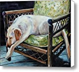 Afternoon Nap Canvas Print / Canvas Art - Artist Molly Poole