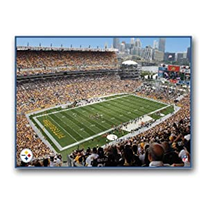 NFL Pittsburgh Steelers Stadium 22x28 Canvas Art by Pangea Brands
