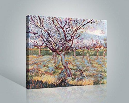 vincent-van-gogh-florecimiento-de-arboles-1888-cuadro-lienzo-montado-sobre-bastidor-50-x-40cm