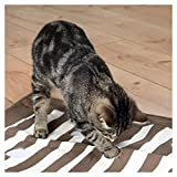 Trixie 46005 Cat Activity Pföteldecke