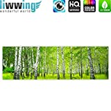 Canvas picture 145x45cm (57.1 x 17.7 inch) PREMIUM 3cm wooden stretcher-frame 1-piece SUNNY BIRCH FOREST by liwwing (R) Canvas Print Canvas Art Wall Picture Wall Mural Photo Birch forest trees forest sun birch grove birch birch tree nature grass