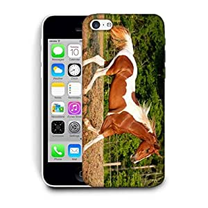 Snoogg Single Horse Running Printed Protective Phone Back Case Cover For Apple Iphone 5C