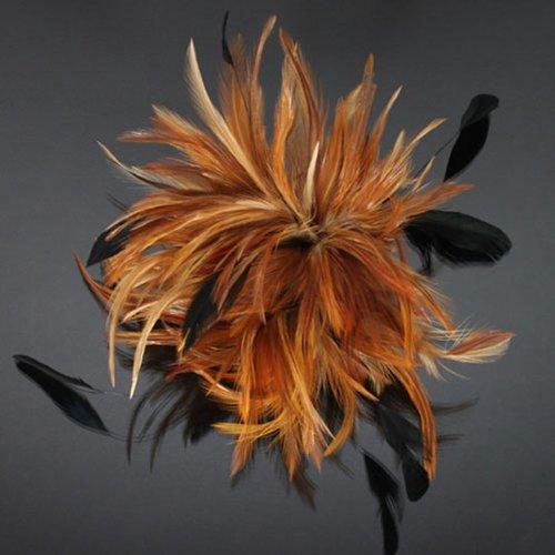 Feather Fashion Hair Clip/brooch Fw235-h22