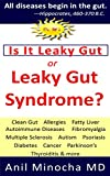 IS IT LEAKY GUT OR LEAKY GUT SYNDROME: Clean Gut, Allergies, Fatty Liver, Autoimmune Diseases, Fibromyalgia, Multiple Sclerosis, Autism, Psoriasis, Diabetes, ... & More (Digestive Wellness Book 2)