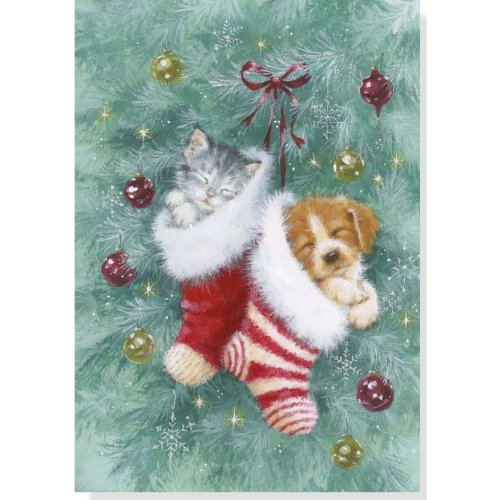 Stocking Pets Holiday Boxed Cards (Christmas Cards, Holiday Cards, Greeting Cards)