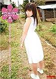 DAISY 14