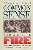 Common Sense and a Little Fire: Women and Working-Class Politics in the United States, 1900-1965 (Gender and American Culture)