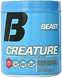 Beast Sports Nutrition Creature Beast, Fruit Punch, Net Wt 10.58 oz