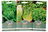 Mr Fothergill's Seeds Lettuce Green Leaves Collection