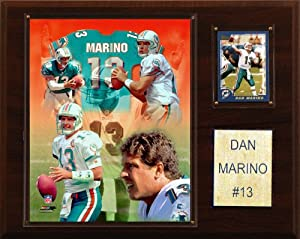 NFL Dan Marino Miami Dolphins Player Plaque by C&I Collectables